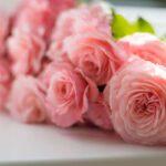 flower Bouquet for valentines day